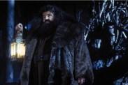 Robbie Coltrane dans Harry Potter à l'école des sorciers (2001)