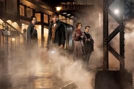 Dan Fogler, Alison Sudol, Eddie Redmayne, et Katherine Waterston dans Les animaux fantastiques (2016)
