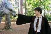 Daniel Radcliffe dans Harry Potter et le prisonnier d'Azkaban (2004)