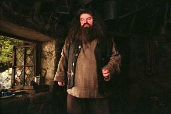 Robbie Coltrane dans Harry Potter et le prisonnier d'Azkaban (2004)
