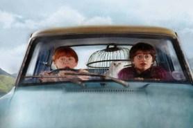 Rupert Grint et Daniel Radcliffe dans Harry Potter et la chambre des secrets (2002)