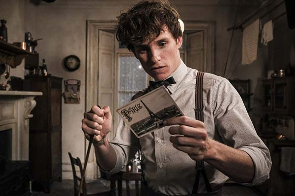 Eddie Redmayne dans Fantastic Beasts: The Crimes of Grindelwald (2018)